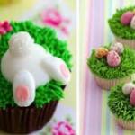 Cupcakes Galore & More!